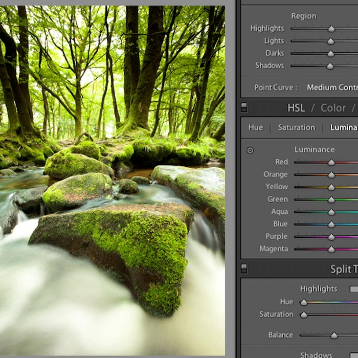 Lightroom 4 for Photographers