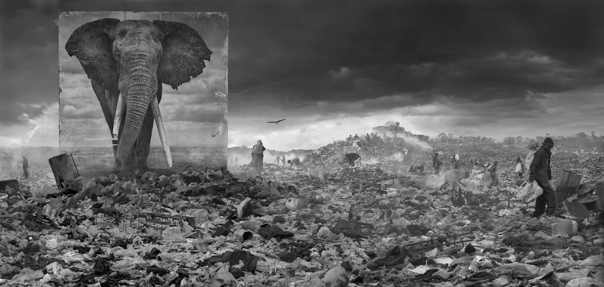 An image from Inherit the Dust by Nick Brandt