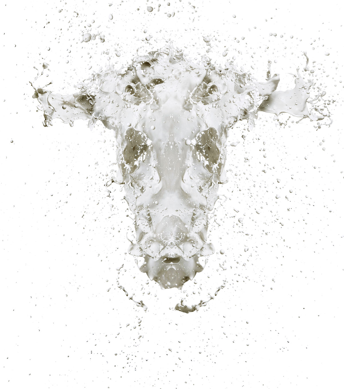 Dairy Cow by Jonathan Knowles