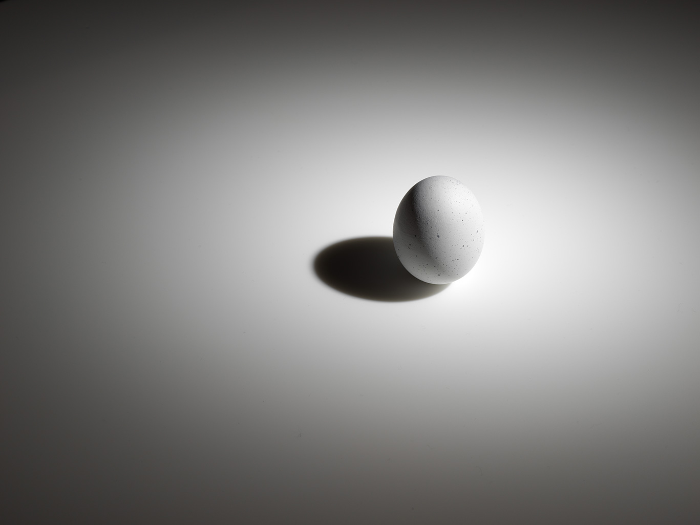 Example of still life photography. Moody still life photo of an egg